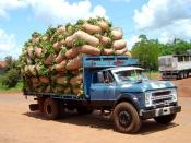Chevrolet truck loaded with lots of yerba mate (Argentina)