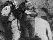 Kafka at the age of five