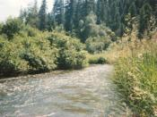 Sanpoil River in northern Washington, USA, flows through the Colville Indian Reservation and the Colville and Okanogan National Forests.