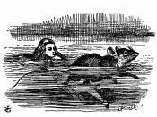 Alice's Abenteuer im Wunderland Übersetzer: Antonie Zimmermann Orginal Titel: Alice's Adventures in Wonderland Illustrationen: John Tenniel