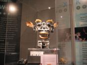 Kismet, a robot with rudimentary social skills