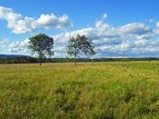 Shawangunk Grasslands National Wildlife Refuge in the Town of Shawangunk, New York.