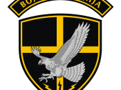 English: Patch of Military Police/Counter-terrorist Battalion