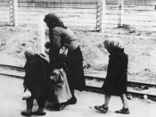 Hungarian Jewish children and an elderly woman on the way to the gas chambers of Auschwitz-Birkenau (1944), many children and elderly were murdered immediately after arrival and were never registered