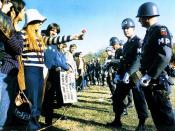 English: Photograph of a Female Demonstrator Offering a Flower to a Military Police Officer, 10/21/1967
