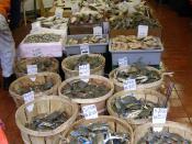 Deutsch: Fischladen in China Town, Manhattan, NYC