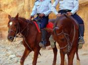 English: mounted Tourist-Police officers in Petra, (Jordan)