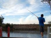 Boy fishing from pier