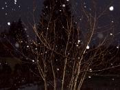 English: Snowfall