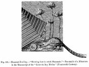English: Pheasant Fowling. Showing how to catch Pheasants. Fac simile of a Miniature in the Manuscript of the Livre du Roy Modus. Fourteenth Century. Русский: Ловля фазана. Факсимиле репродукции из манускрипта «Livre du Roy Modus» (XIV век)