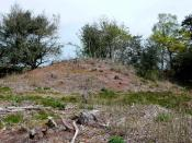 English: Thomas Hardy Locations, Return of the Native This is one of the so called Rainbarrows above Duddle Heath, one of the heaths close to Hardy's birthplace that became Egdon Heath in the novel. The Rainbarrow has a superb view over the valley of the