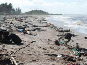 English: Showing the litter problem on the coast of Guyana.