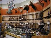 The Lodge section of a modern Dick's Sporting Goods store.