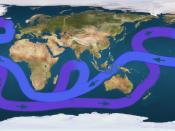 Path of the thermohaline circulation. Purple paths represent deep-water currents, while blue paths represent surface currents.