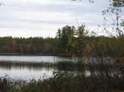 Woodman, New Hampshire