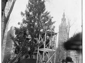 Xmas tree in Madison Sq., N.Y.C.  (LOC)