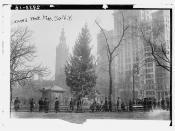 Xmas tree - Madison Sq. N.Y.  (LOC)