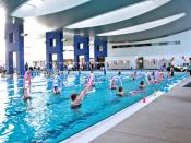 Aqua Aerobics Category:Water Aerobics Category:Aerobics