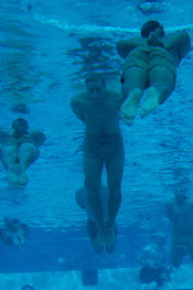 English: CORONADO, Calif. (Jan 25, 2008) Basic Underwater Demolition/Seals students swim 100 meters with bound hands and feet as part of their first-phase swimming test. The test is used as a tool to examine how comfortable each student feels underwater.