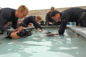 Second Phase Students do a safety check on their gear before making a dive.