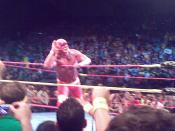 wrestling legend hulk hogan