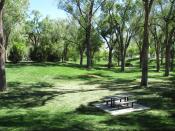 English: Roosevelt Park, Albuquerque New Mexico, May 2010