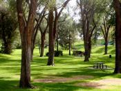 English: WPA era Roosevelt Park in Southeast Albuquerque, New Mexico