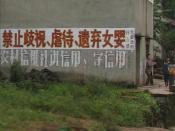 Don't abandon baby girls: the characters in red on the roadside sign in Danshan Township, Sichuan Party Committee and government reads