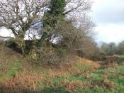 English: Motte and bailey castle, Eglwyswrw It is difficult to get an idea of the structure of this old earthwork whose outlines have sunk back into the landscape but this view from the southwest shows the bailey and the ditch. It is sited directly west o