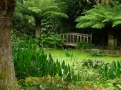 English: Pond, Trengwainton Gardens A water feature and bridge in the upper part of Trengwainton Gardens. In this humid and mild environment it is possible to grow sub-tropical plants.