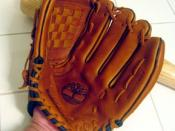 The front of a baseball glove with a baseball bat behind