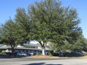 Lake City FL Jan2014 Mediplex