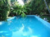 Ernest Hemingway's Salt water pool