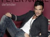 Defender (Peter Andre song)