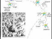 English: original diagram- banks vs pele- Mexico 1970