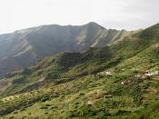 Los Carrizales, Tenerife