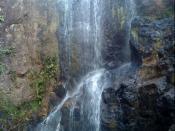 Llano del Muerto City: Perquin Department: Morazan Country: El Salvador :) Region: Central America