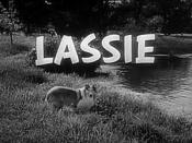 Lassie (1954 TV series)