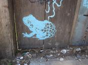 Piety Frog