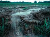 English: View of runoff, also called nonpoint source pollution, from a farm field in Iowa during a rain storm. Topsoil as well as farm fertilizers and other potential pollutants run off unprotected farm fields when heavy rains occur. Deutsch: Wassererosio