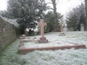 English: Frozen cobwebs in Corhamton Churchyard