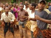 Baka Pygmy dancers in the East Province of Cameroon, June 2006.