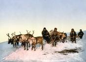 English: Traveling by reindeer, Arkhangelsk, Russia. photomechanical print : photochrom, color. Svenska: Rensläde, Archangelsk i Ryssland.
