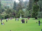 English: Botanical Garden at Udhagamandalam