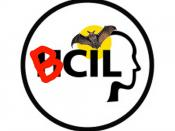 BCIL (Bat-Computer Interaction Lab) at University of Maryland