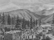 Drawing of the Truckee Lake camp based on descriptions by William Graves, survivor of the Donner Party
