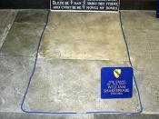 Shakespear's Grave I
