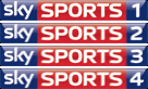 English: Sky Sports Logo's from 6th January 2010