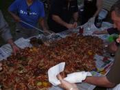 Crawfish boil party, New Orleans. The boil master spreads the wealth around