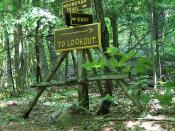 Landon Bay Trails